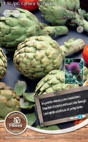 Artichoke (Cynara Scolymus) Seeds 4 Garden