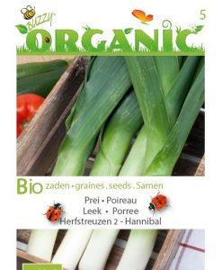 Bio Leek Autumn Giant Hannibal Seeds 4 Garden