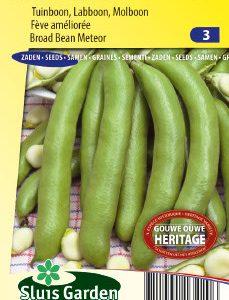 Broad bean Meteor Seeds 4 Garden