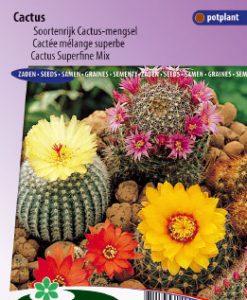 Cactus Superfine Mix Seeds 4 Garden