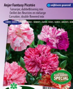 Carnation Chabaud double Picotee Fantasy mix Seeds 4 Garden