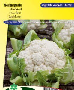 Cauliflower Neckarperle Seeds 4 Garden