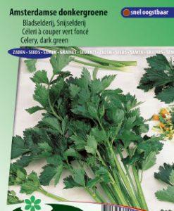 Celery Amsterdam Dark Green (Apium grav.) Seeds 4 Garden