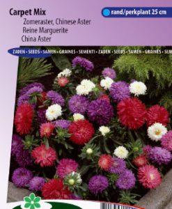 China aster Colour Carpet Mix Seeds 4 Garden