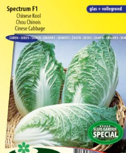 Chinese cabbage Spectrum F1 Seeds 4 Garden
