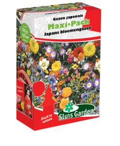 Container Flower meadow mixture JAPANESE Seeds 4 Garden