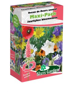 Container Flower meadow mixture PERENNIAL Seeds 4 Garden