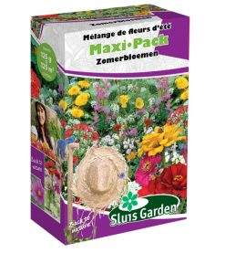 Container Flower meadow mixture SUMMER Seeds 4 Garden