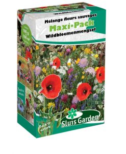 Container Flower meadow mixture WILD Seeds 4 Garden