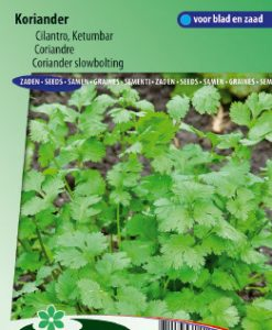 Coriander slowbolting (Coriandrum sativum) Seeds 4 Garden