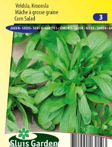 Corn Salad Grote Noordhollandse Seeds 4 Garden