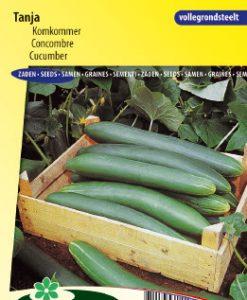 Cucumber Tanja Seeds 4 Garden