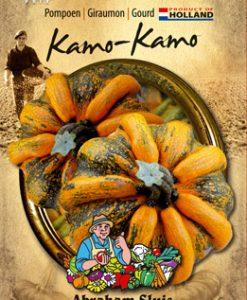Cucurbita pepo Kamo-Kamo Seeds 4 Garden