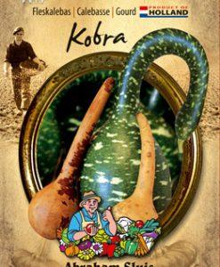 Cucurbita siceraria Kobra Seeds 4 Garden