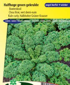 Curly Kale Halbhoher Grüner Krauser Seeds 4 Garden