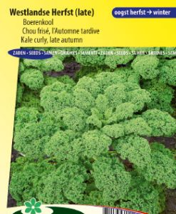 Curly Kale Late Autumn (Westlandse Herfst late) Seeds 4 Garden