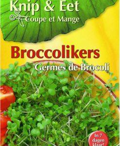 Cut & Eat Broccoli cress Seeds 4 Garden