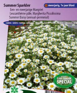 Daisy Summer Sparkler (annual / perennial variety) Seeds 4 Garden