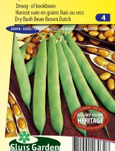 Dry Bush Bean Brown Dutch Seeds 4 Garden