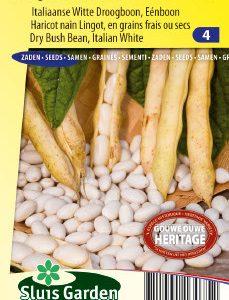 Dry Bush Bean
