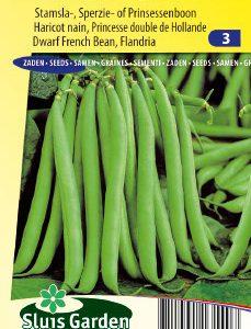 Dwarf French Bean Flandria Seeds 4 Garden