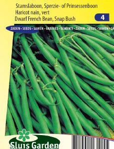 Dwarf French Bean Green Arrow Seeds 4 Garden