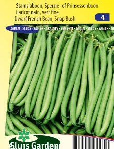 Dwarf French Bean Kylian Seeds 4 Garden