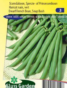 Dwarf French Bean Prelude Seeds 4 Garden