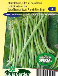 Dwarf French Filet Bean Calima Seeds 4 Garden