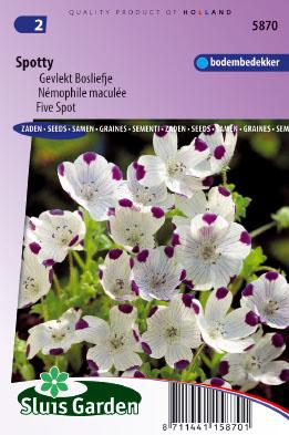 Five Spot Spotty Seeds 4 Garden
