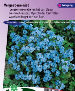 Forget-me-not (woodland) Indigo Blue Seeds 4 Garden