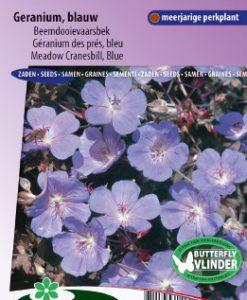 Geranium Meadow Cranesbill