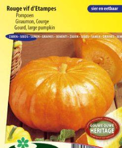 Gourd Rouge Vif d'Etampes Seeds 4 Garden