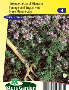 Green Manure Crop Phacelia Tanacetifolia Seeds 4 Garden