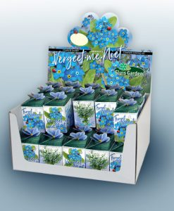 Greengift Forget-me-not 40 pcs in showbox Seeds 4 Garden