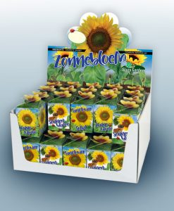 Greengift Sunflower 40 pcs in showbox Seeds 4 Garden