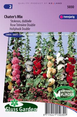 Hollyhock Chater's Strain Mix Seeds 4 Garden