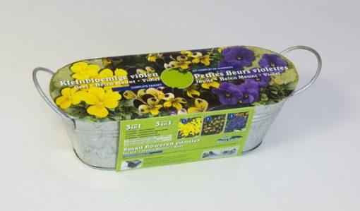 Kit Small flowered Pansies Seeds 4 Garden