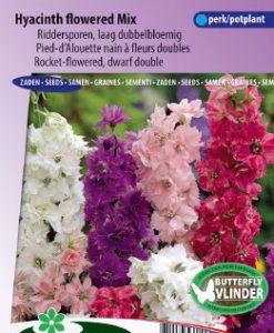 Larkspurs Rocket-flowered dwarf Mix Seeds 4 Garden