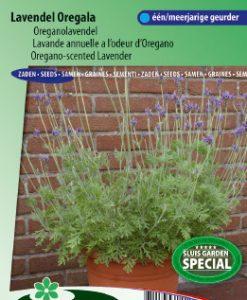 Lavender Oregala