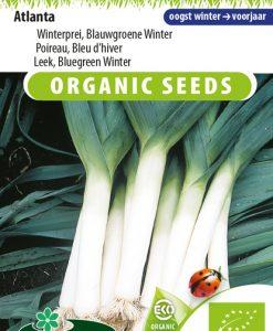 Leek Bluegreen winter Atlanta (Winter) EKO Seeds 4 Garden