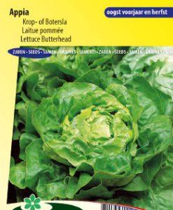 Lettuce Butterhead Appia Seeds 4 Garden