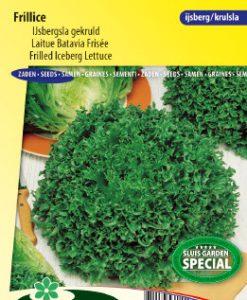 Lettuce iceberg frilled Frillice Seeds 4 Garden