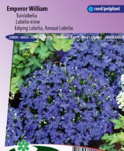 Lobelia (edging) Emperor William Seeds 4 Garden