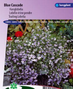 Lobelia (trailing) Blue Cascade Seeds 4 Garden