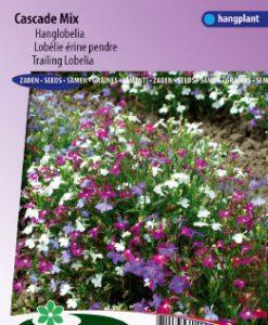 Lobelia (trailing) Cascade Mix Seeds 4 Garden