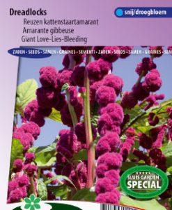 Love-Lies-Bleeding Dreadlocks Seeds 4 Garden