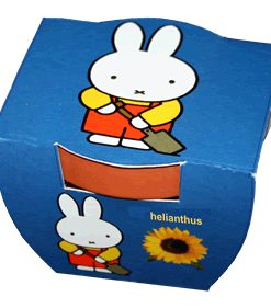 Miffy and the Sunflower Seeds 4 Garden