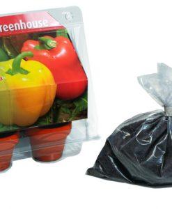 Mini Greenhouse Sweet Pepper Seeds 4 Garden