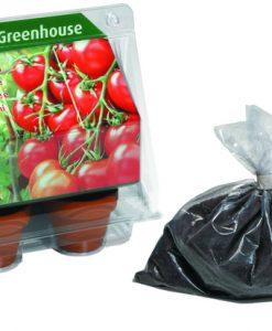 Mini Greenhouse Tomato Seeds 4 Garden